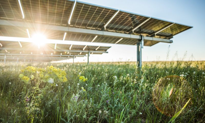 Lightsource bp Announces €900 Million Solar Investment in Portugal